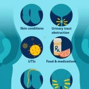 درمان زخم آلت تناسلی